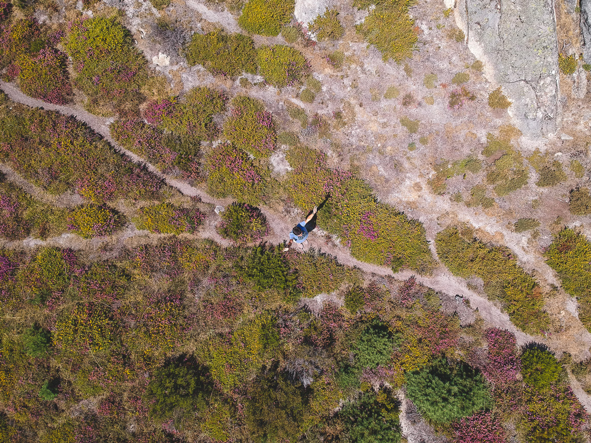 Aerial view from Alvao Natural Park in green and pink summer hues