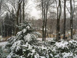 Dia de Inverno com muita neve no Parque Lazienki em Varsóvia
