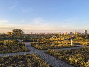 Pôr do sol nos jardins altos da Biblioteca da Universidade de Varsóvia na Polónia