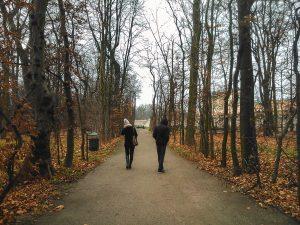 Inverno a chegar aos jardins do Palácio Wilanow em Varsóvia