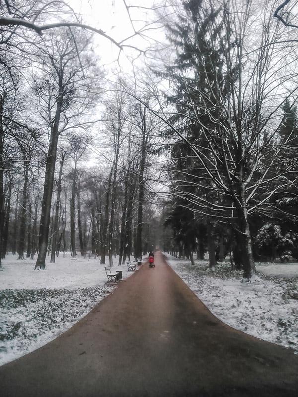 Dia de Inverno no Parque Lazienki em Varsóvia na Polónia