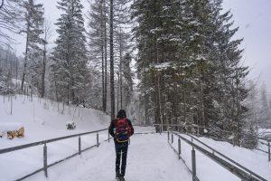 Rui a enfrentar uma forte tempestade de neve no Sul da Polónia