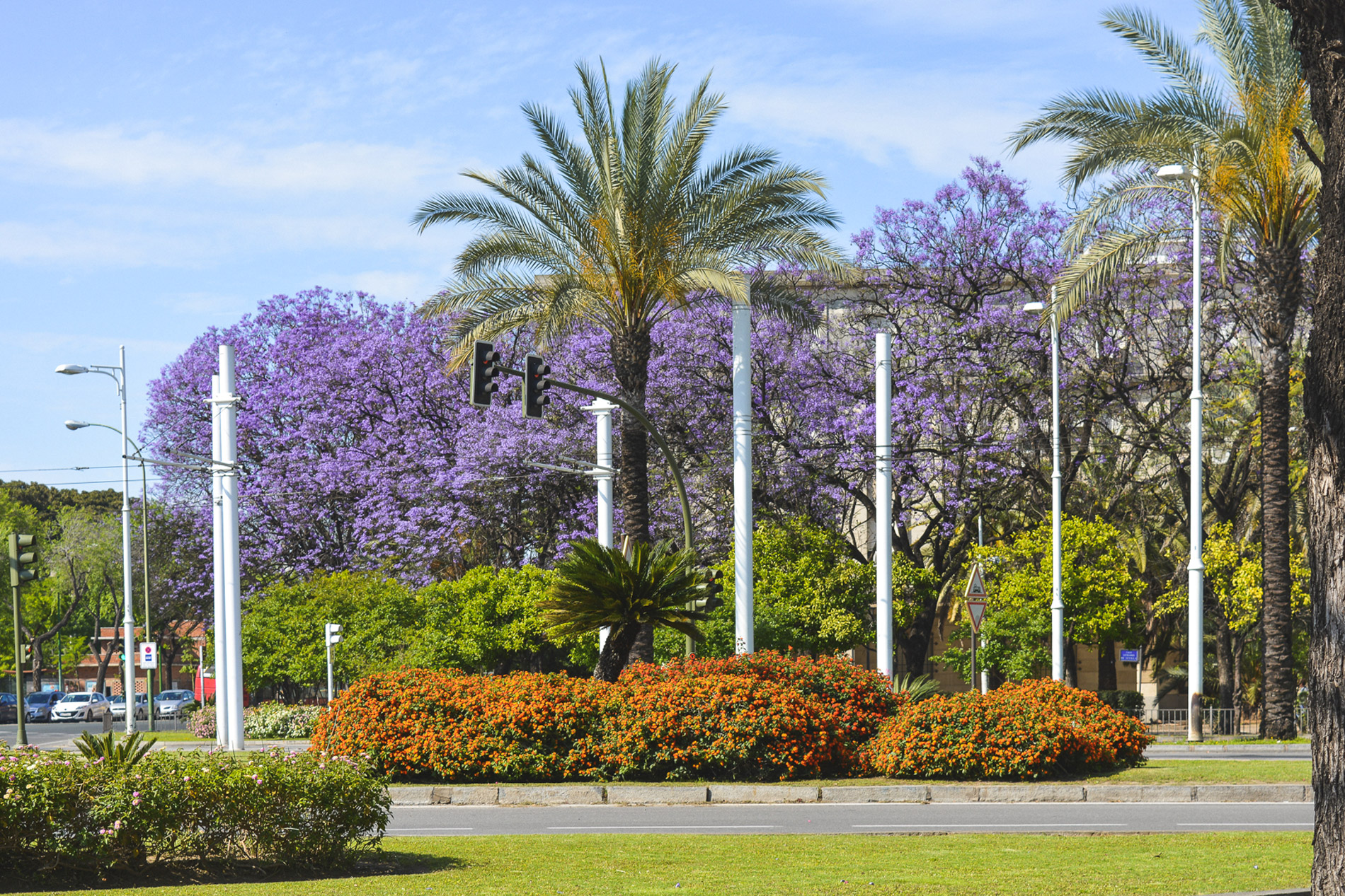 A Primavera é uma ótima altura para visitar Sevilha em Espanha