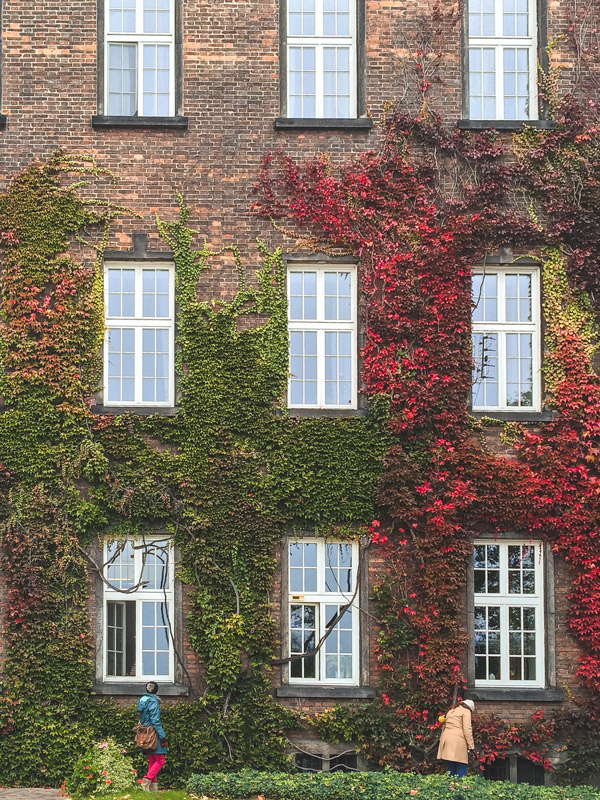 Parede de outono no Castelo de Wawel em Cracóvia