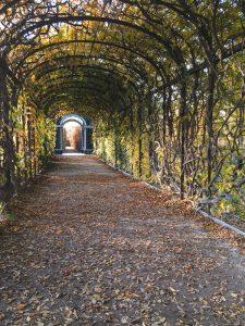 Outono no Palácio de Schonbrunn em Viena