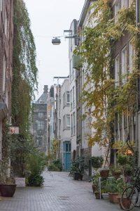 Rua recheada de plantas em Amesterdão