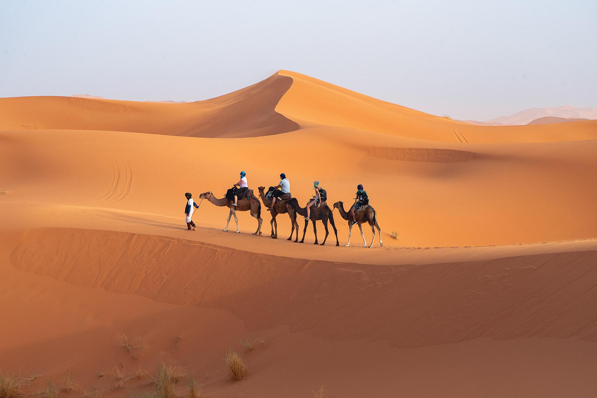 Passeio de camelo nas dunas de Erg Chebbi no Deserto em Marrocos