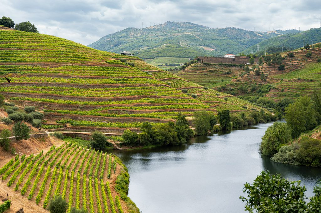 Vista da Quinta do Tedo no Douro