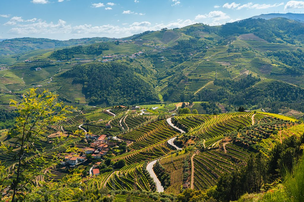 Roadtrip pela Estrada N222: as estradas sinuosas do Douro
