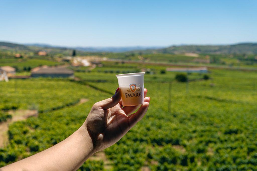 Vale a pena experimentar o Moscatel de Favaios, na aldeia de Favaios no Douro