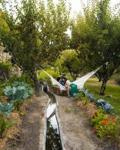 Uma estadia no Douro de sonho na Casa Agrícola da Levada